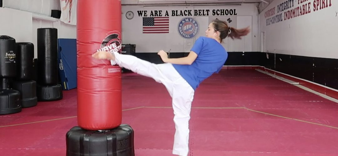 5 Basic Kicks You Should Know for Beginning Taekwondo Sparring: TKD for Beginners